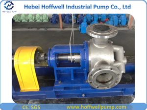 5 Inch Stainless Steel NYP Internal Gear Pump