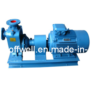 CWZ Marine Horizontal Sea Water Centrifugal Pump