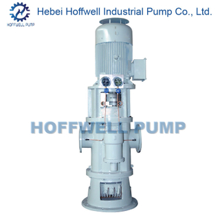 CE Approved 2W. W6.9 Vertical Twin Screw Pump