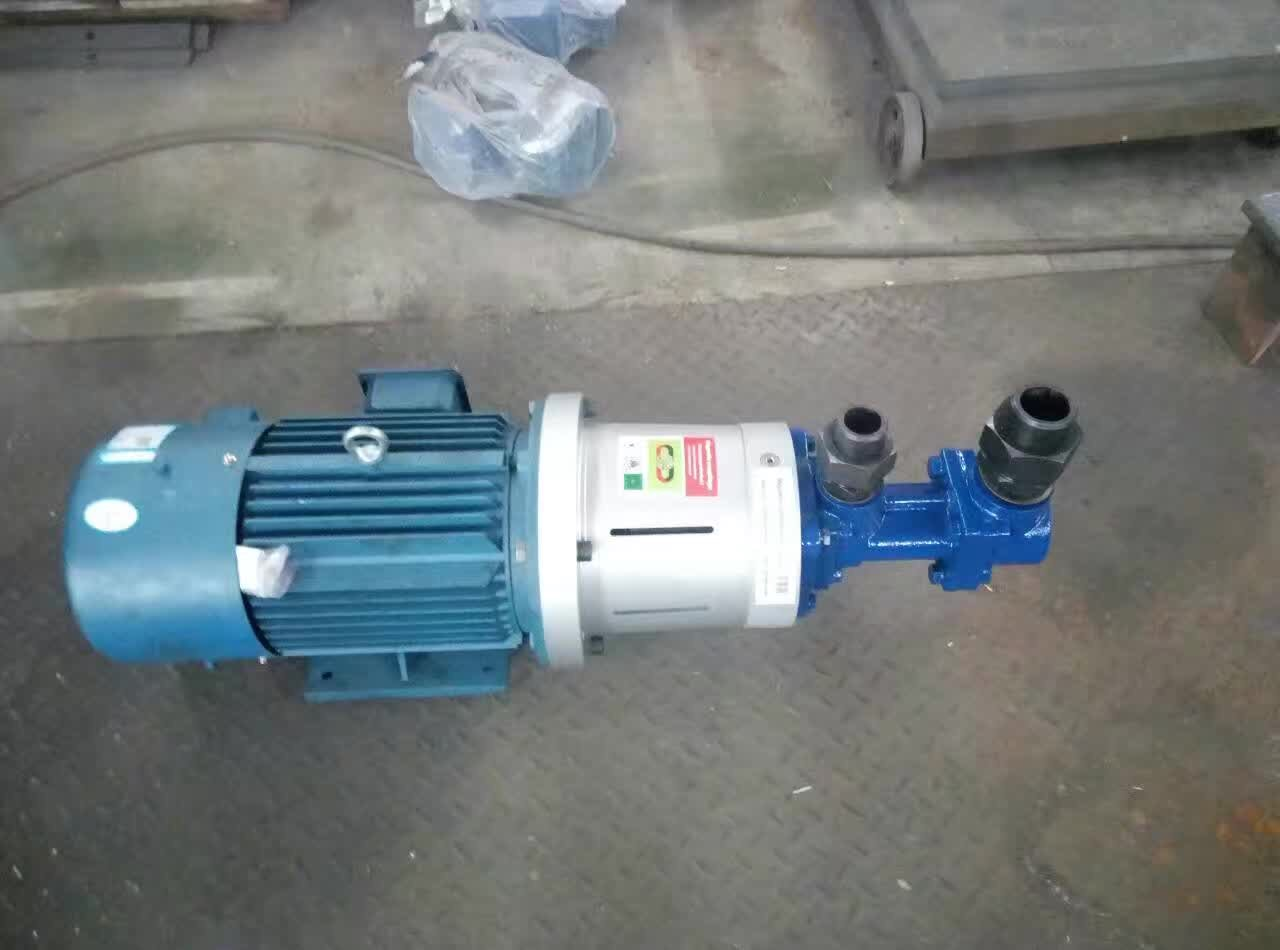 Exported 3G Magnetic Coupling Triple Screw Pump to Dubai